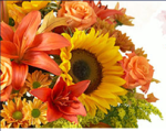 1800Flowers_SWA_1500.png