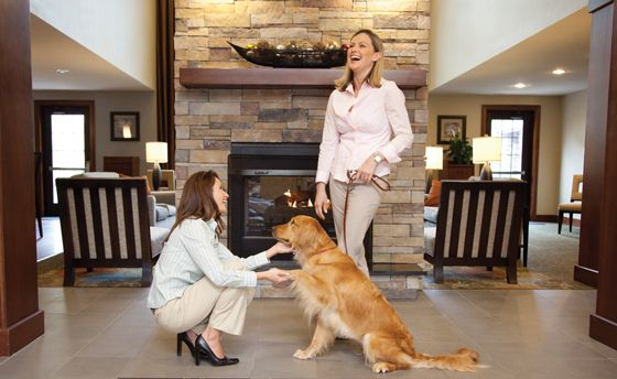 Staybridge Suites Pet Policy